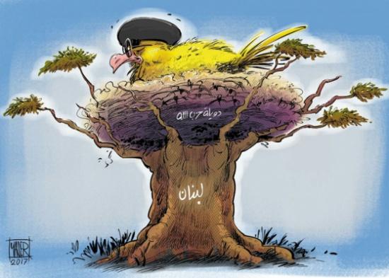 """קן ל""""טרור"""" בין העצים"""